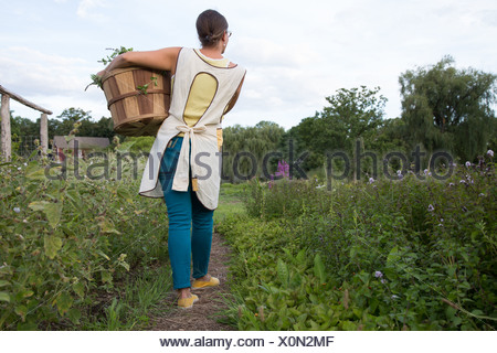 Woman carrying basket of plants on family herb farm - Stock Photo