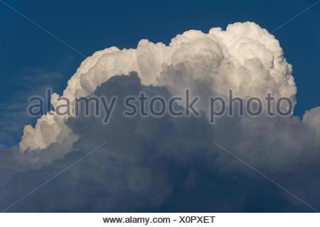 Cumulonimbus cloud, thundercloud, Marzling, Upper Bavaria, Bavaria, Germany - Stock Photo
