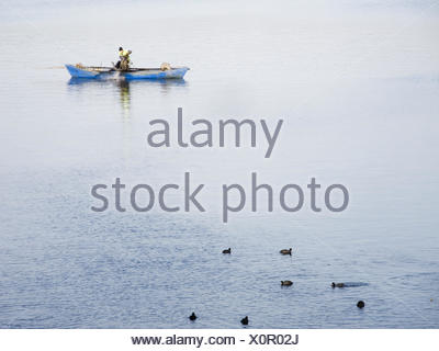 lonesome fisher with coots - Stock Photo