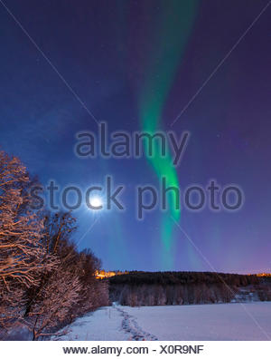 aurora and moon above winter scenery, Norway, Troms, Tromsoe - Stock Photo
