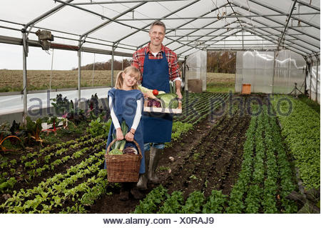 Father and daughter harvesting vegetables in greenhouse - Stock Photo