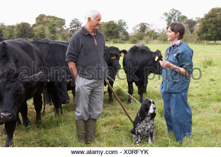 Farmer In Discussion With Vet In Field - Stock Photo