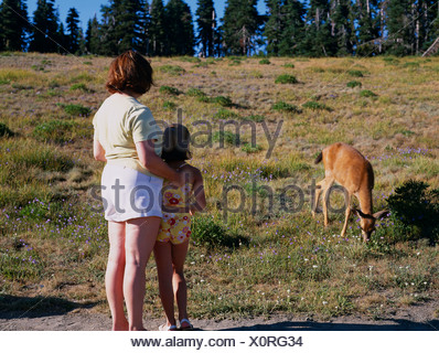 Mother and child watching black tailed deer.  Hurricane Ridge, Olympic National Park, Washington, USA - Stock Photo