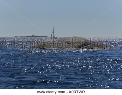 stockholm archipelago, stockholms län, uppland, sweden - Stock Photo