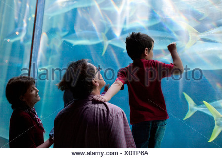 Young children and grandparents looking at fish in aquarium - Stock Photo