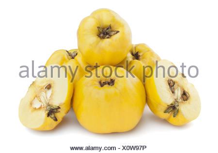 five quinces on a white background - Stock Photo