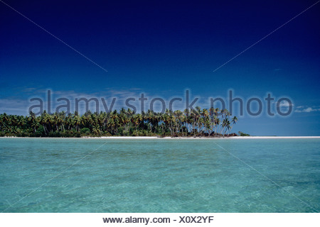 Kiribati. Tarawa. Tropical beach with coconut palm trees. - Stock Photo