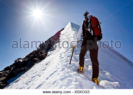 Mountain climber ascending Hochfeiler Mountain along the summit ridge, Pfitschtal, South Tyrol province, Trentino-Alto Adige - Stock Photo