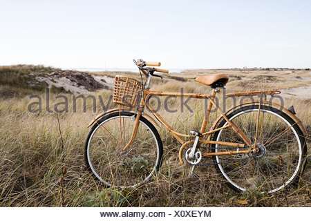 Bicycle near sand dunes - Stock Photo