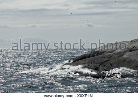 Rocky sea side - Stock Photo