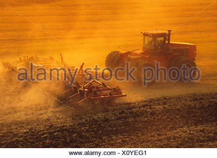A tractor pulling a springtooth harrow prepares a field of post-harvest wheat stubble for Winter fallow period /Manitoba, Canada - Stock Photo