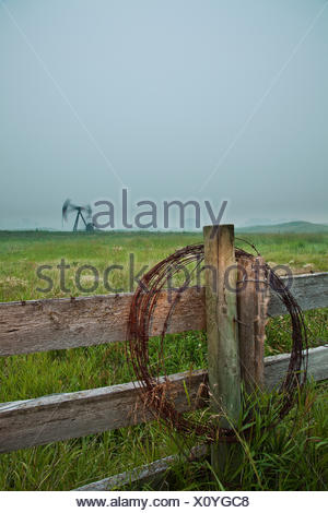 Barbed wire on fence post with pumpjack in background at dusk, Alberta, Canada - Stock Photo