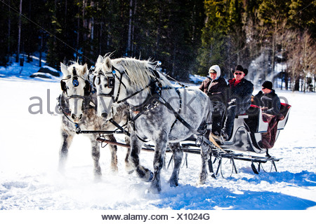 friends sit under blankets in the winter, on snow filled sleigh ride. - Stock Photo