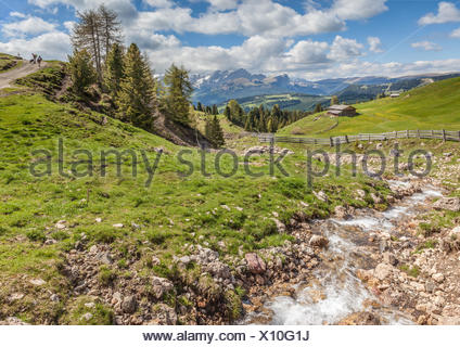 geography / travel, Italy, South Tyrol, mountain stream on the Seiser mountain pasture, Additional-Rights-Clearance-Info-Not-Available - Stock Photo