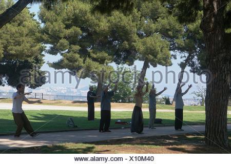 Men Participating in Tai Chi, Parc de la Colline du Château, Nice, France. - Stock Photo