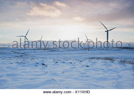 Wind turbines on sandy landscape, Ayrshire, Scotland - Stock Photo