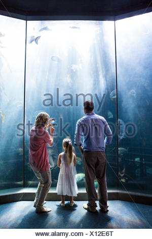 Mother taking photo of fish while daughter and father looking at fish tank - Stock Photo