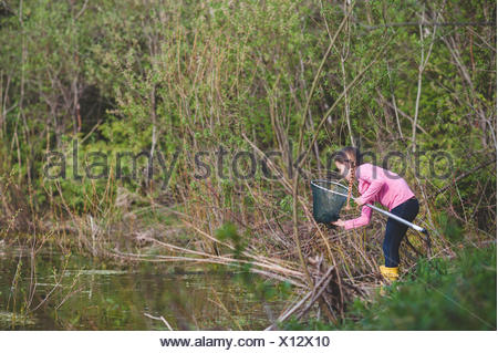 Girl retrieving frog from fishing net at pond - Stock Photo