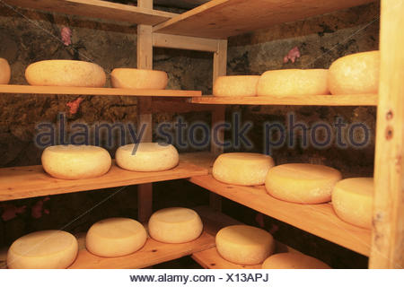 Europe, Austria, Salzburg country, Salzburg Saalachtal, white brook with Lofer, Kammerlinger alps, cheese loaves, cellars, mature, - Stock Photo