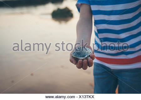 Mid Section View Of Boy Showing Seashell - Stock Photo