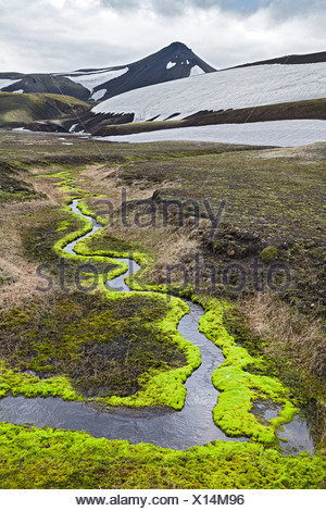A meandering creek, surrounded by bright green moss, below Krakatindur Mountain, Fjallabak Nature Reserve, Highlands of Iceland - Stock Photo