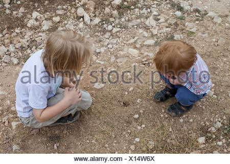 Two boys looking down at a hole in the dirt - Stock Photo