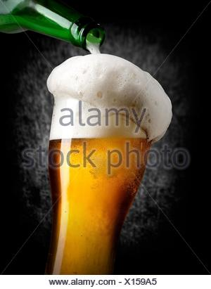 Beer pouring into glass on black background. - Stock Photo