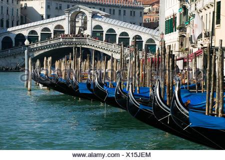 bridge processor magnifico bridge venice gondolas channel venice gondolas canal - Stock Photo