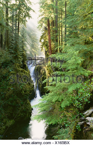 Sol Duc Falls are in the forest of Olympic National Park Washington State - Stock Photo