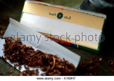 Indian hemp, marijuana, mary jane (Cannabis sativa), products of hemp - Stock Photo