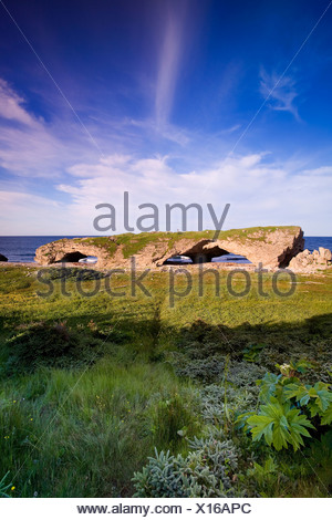 Natural rock archway created by tidal action in The Arches Provincial Park on the island of Newfoundland, Newfoundland and Labra - Stock Photo