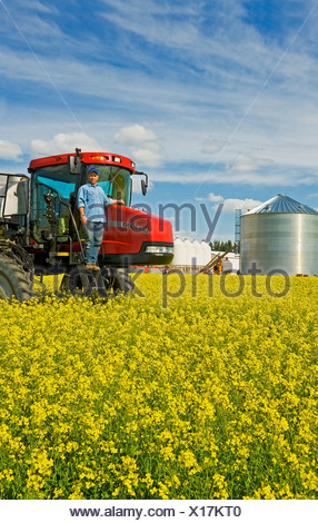 farmer in bloom stage canola field with high clearance sprayer near Dugald, Manitoba, Canada - Stock Photo