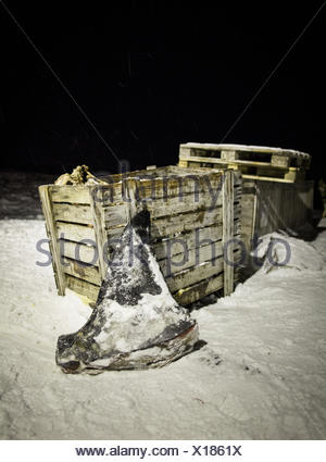 The dorsal fin of a killer whale, used as food for sled dogs and humans alike, is left outside the Inuit settlement of Isortoq, - Stock Photo