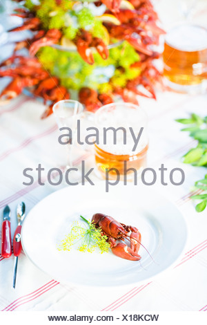 Meal with crayfishes on outdoor table - Stock Photo