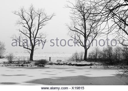 Winterimpression an zugefrohrenem See - Stock Photo
