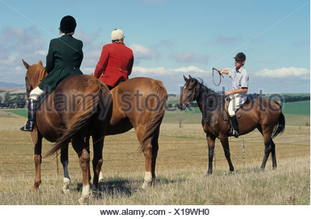Master of Hunt and wife with local landowner, waiting on horseback during harrier hunt, hunting for hares or foxes (introduced - Stock Photo