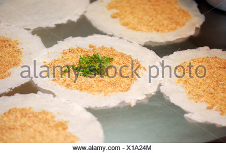 Chinese Burrito - Stock Photo