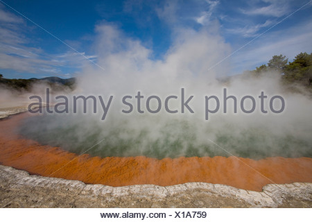 New Zealand Champagne Pool Algae Hot springs Hot spring Water Steam Vapor Vapour Waiotapu Thermal Wonderland - Stock Photo