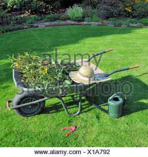 garden cart with green waste - Stock Photo