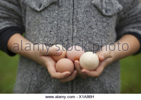 A person holding a clutch of fresh organic hen's eggs - Stock Photo