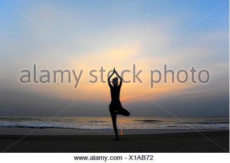 Woman doing yoga on a beach at dusk, Kerala, India - Stock Photo