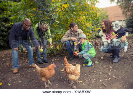 Family and friends feeding apples to chickens in farm, Bavaria, Germany - Stock Photo