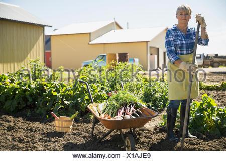 Portrait of woman harvesting vegetables in sunny garden - Stock Photo