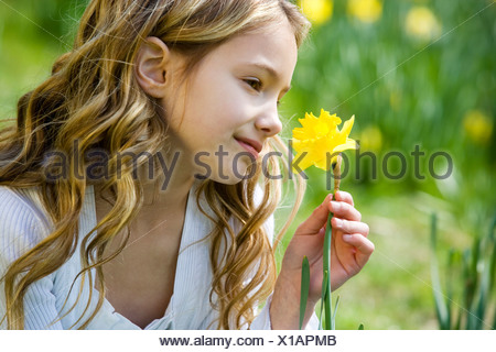 A young girl holding a daffodil - Stock Photo