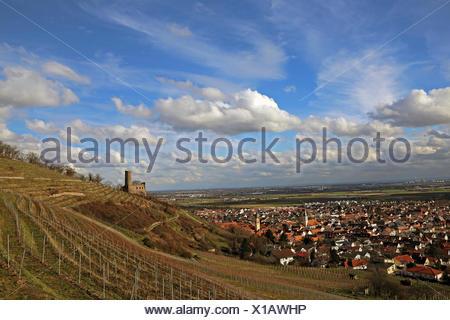 weinberg and strahlenburg about schriesheim - Stock Photo