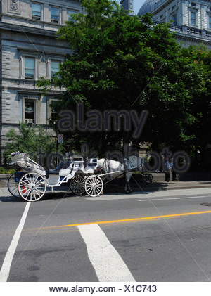 Horse drawn carriage in front of a row of houses, Montreal, Quebec, Canada - Stock Photo