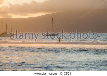 A surfer riding a wave at sunset. - Stock Photo