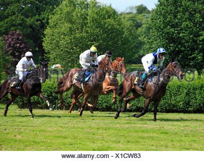 Germany, Europe, Krefeld, Rhine, Lower Rhine, Rhineland, North Rhine-Westphalia, NRW, gallop, racetrack, horse running, racecour - Stock Photo