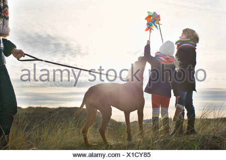 Mid adult man with son, daughter and dog at coast - Stock Photo