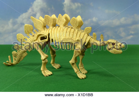 The Stegosaurus is called also plate lizard and in the jurassic period occurred. Its length amounted to approx. 8 m, the height - Stock Photo
